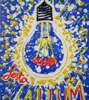 Festa de la Llum 2013