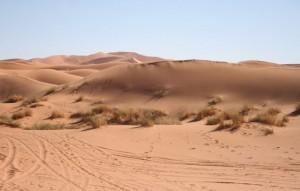 Temperatura no Deserto do Saara em Marrocos