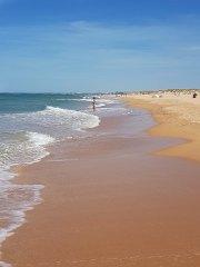 Playa del Palmar en Vejer