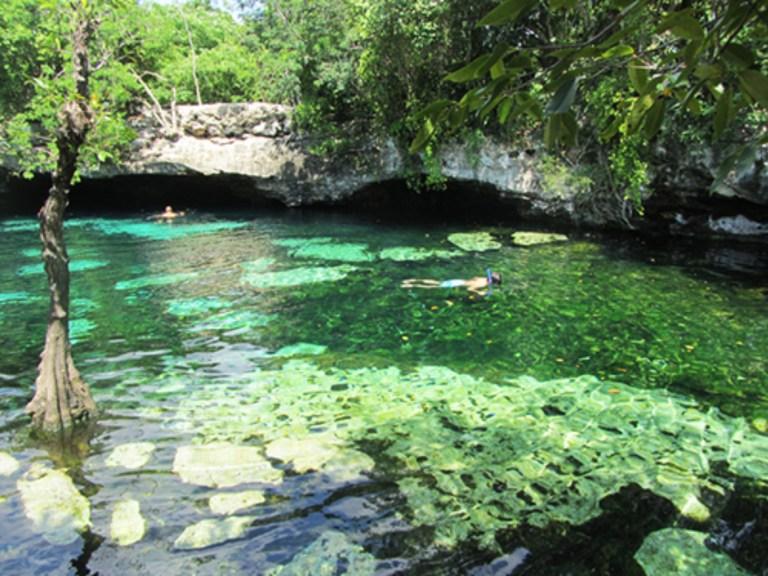 Cenotes Azul na Riviera Maya