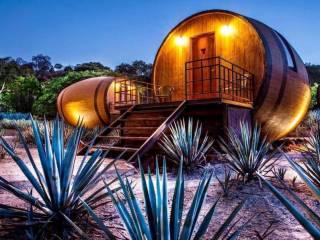 Tequila: Conheça o hotel temático que está conquistando o México