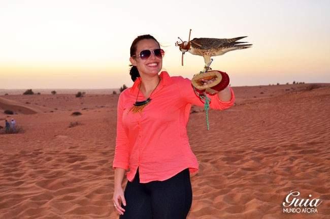 Falcão no deserto de Dubai