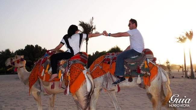 Camelos no Emirates Palace