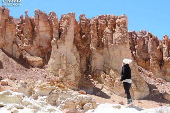 Salar de Tara: o melhor passeio do Deserto do Atacama?