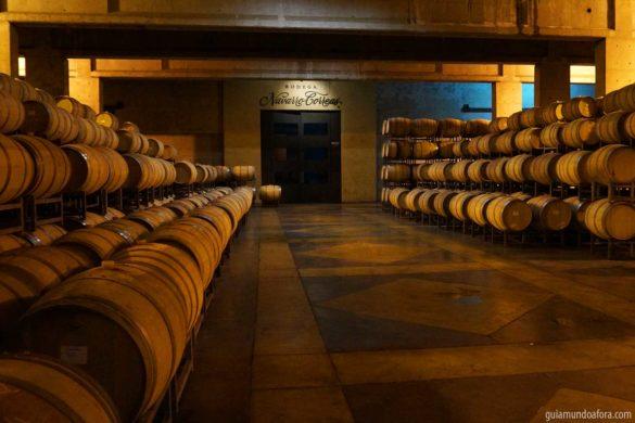 Tour de vinhos em Mendoza (com vídeo)