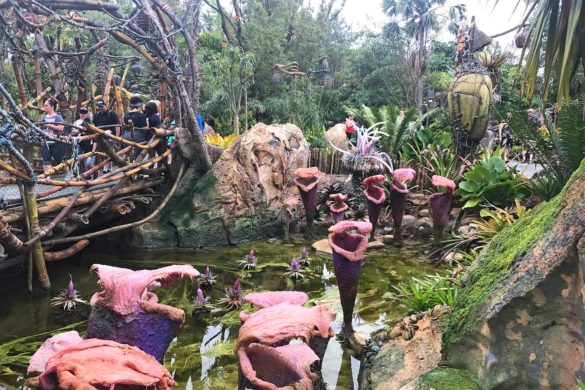 Nova área do avatar na Disney: fotos e dicas para aproveitar melhor!