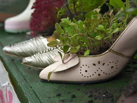 Zapatos convertidos en macetas para decorar
