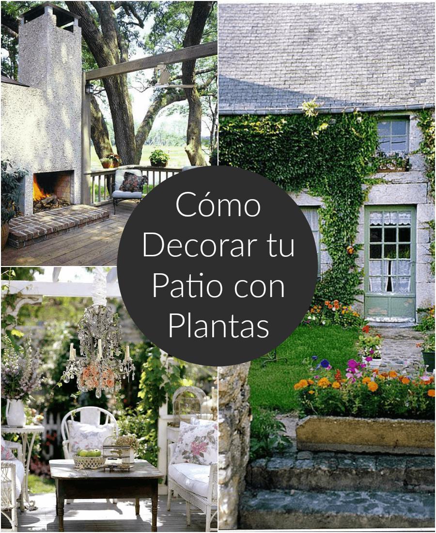 Cmo decorar el patio o la terraza con plantas