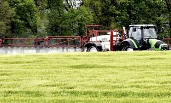 Proyectos ingeniería agroalimentaria