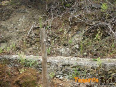 Madera significativa en el barranco que te indica inicio sendero