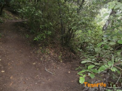Senderos en Monte Aguirre
