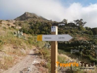 Detalle sendero PR TF-2 en la zona de La Fortaleza