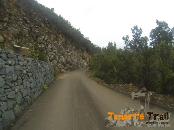 Pista asfaltada (viene de la Casa Forestal) nosotros a la derecha dirección carretera