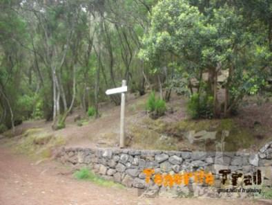 Camino de Candelaria
