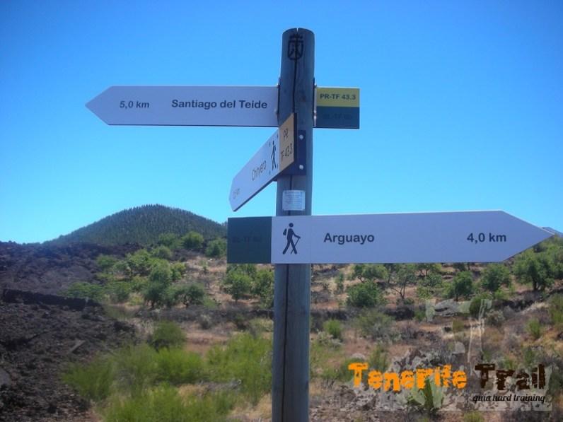 Intersección PR 43 y el sendero local a Arguayo