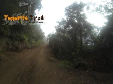 Detalle según vas bajando hacía Roque Negro (sendero a la derecha)