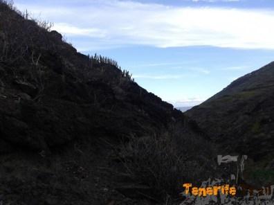 Detalle zona que abandonados el sendero a Tamadiste y comenzamos Palos Hincados