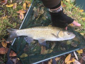 pescare in inverno