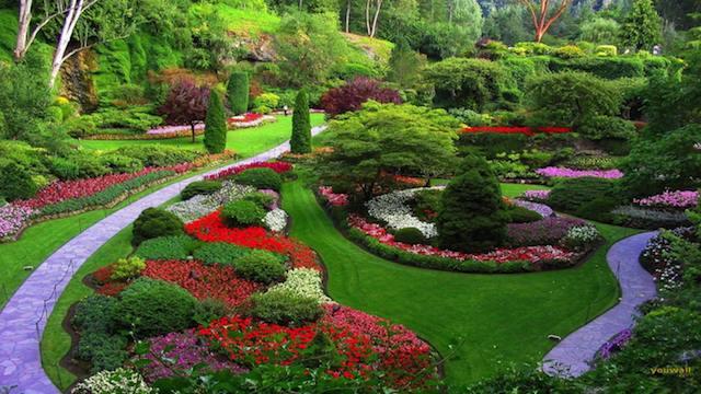 progettare giardini: consigli per principianti | guida giardino - Come Impostare Un Piccolo Giardino