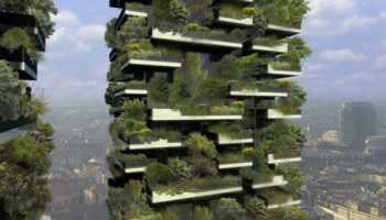Piante e fiori su balconi, terrazzi e giardini con esposizione a ...