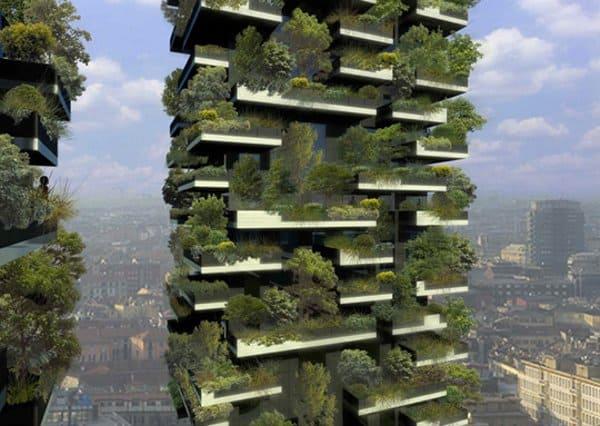 Creare Un Bosco Sul Terrazzo Di Casa