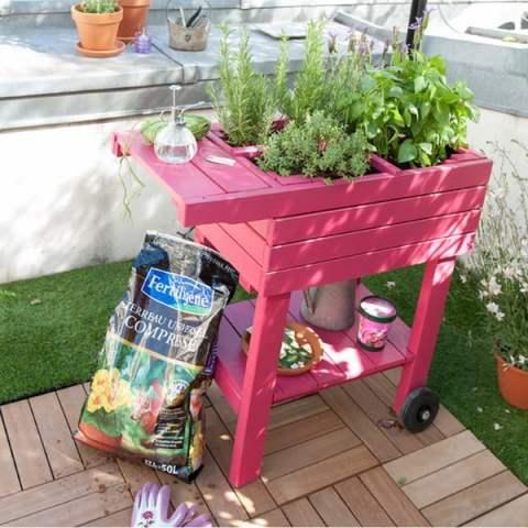 colore in giardino