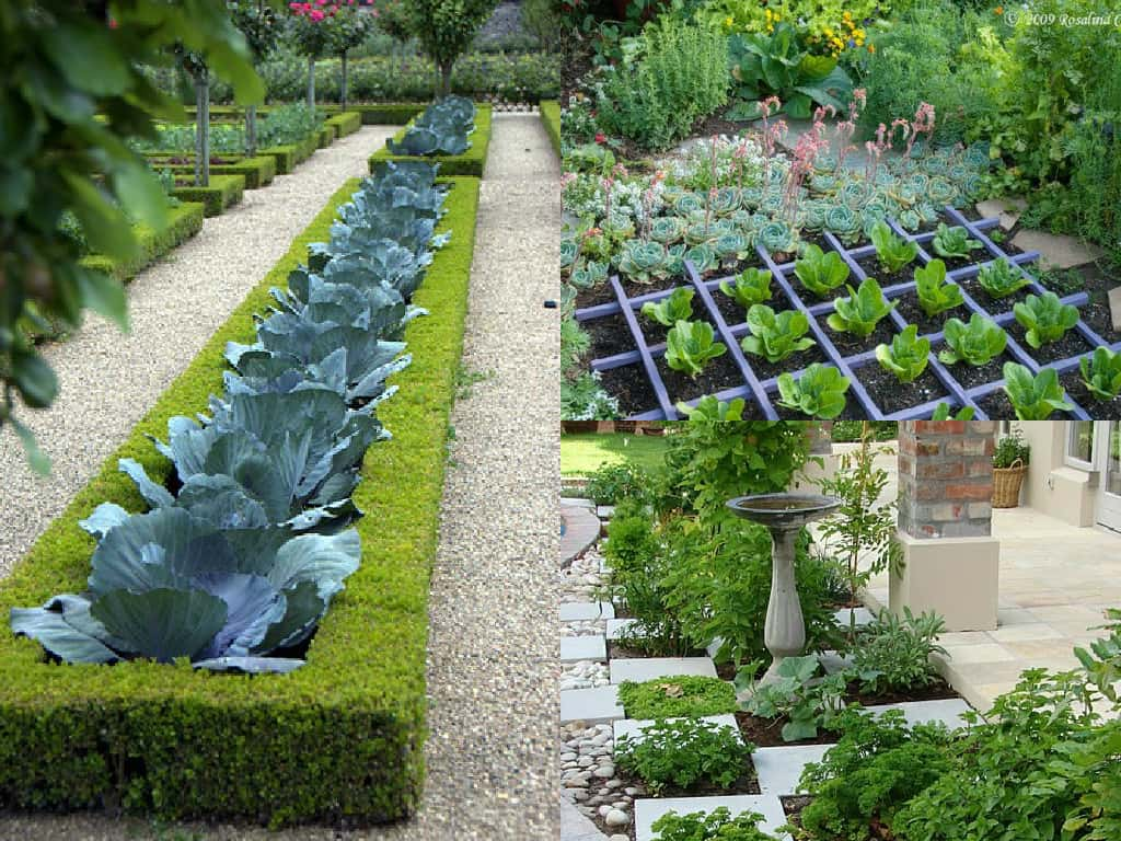 orto o giardino metterli insieme possibile guida