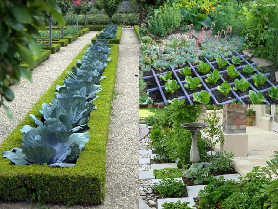 orto e giardino nello stesso spazio