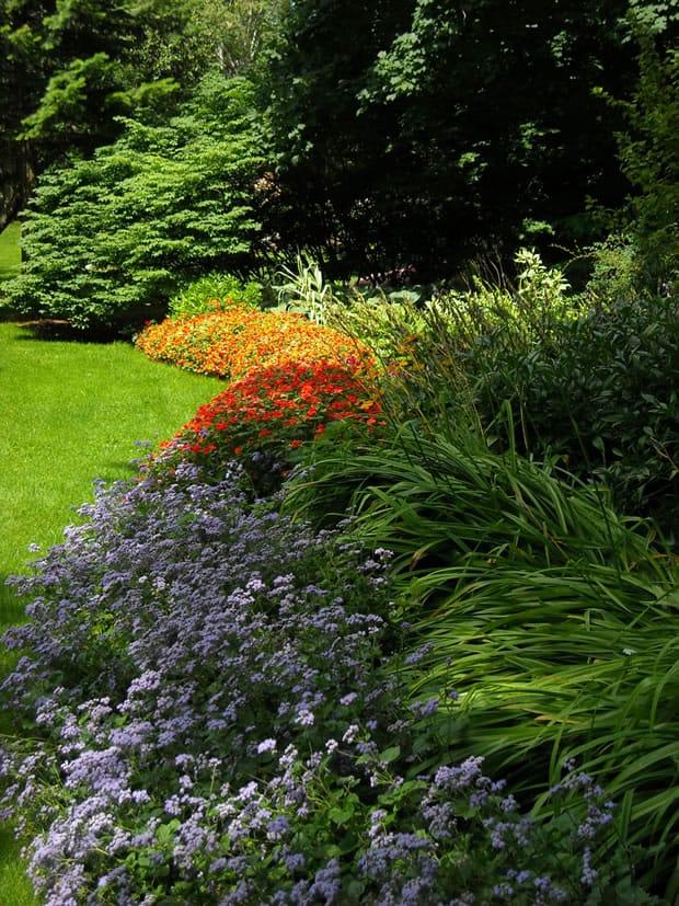7 consigli per creare un giardino a bassa manutenzione