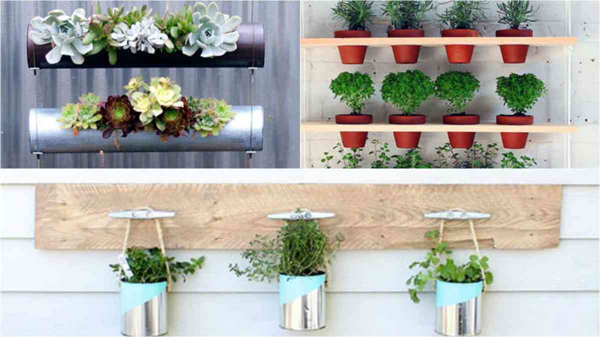 7 idee per realizzare un giardino verticale in maniera for Idee giardino semplice