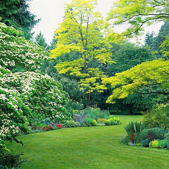 Giardini da sogno 12 linee guida per realizzare un