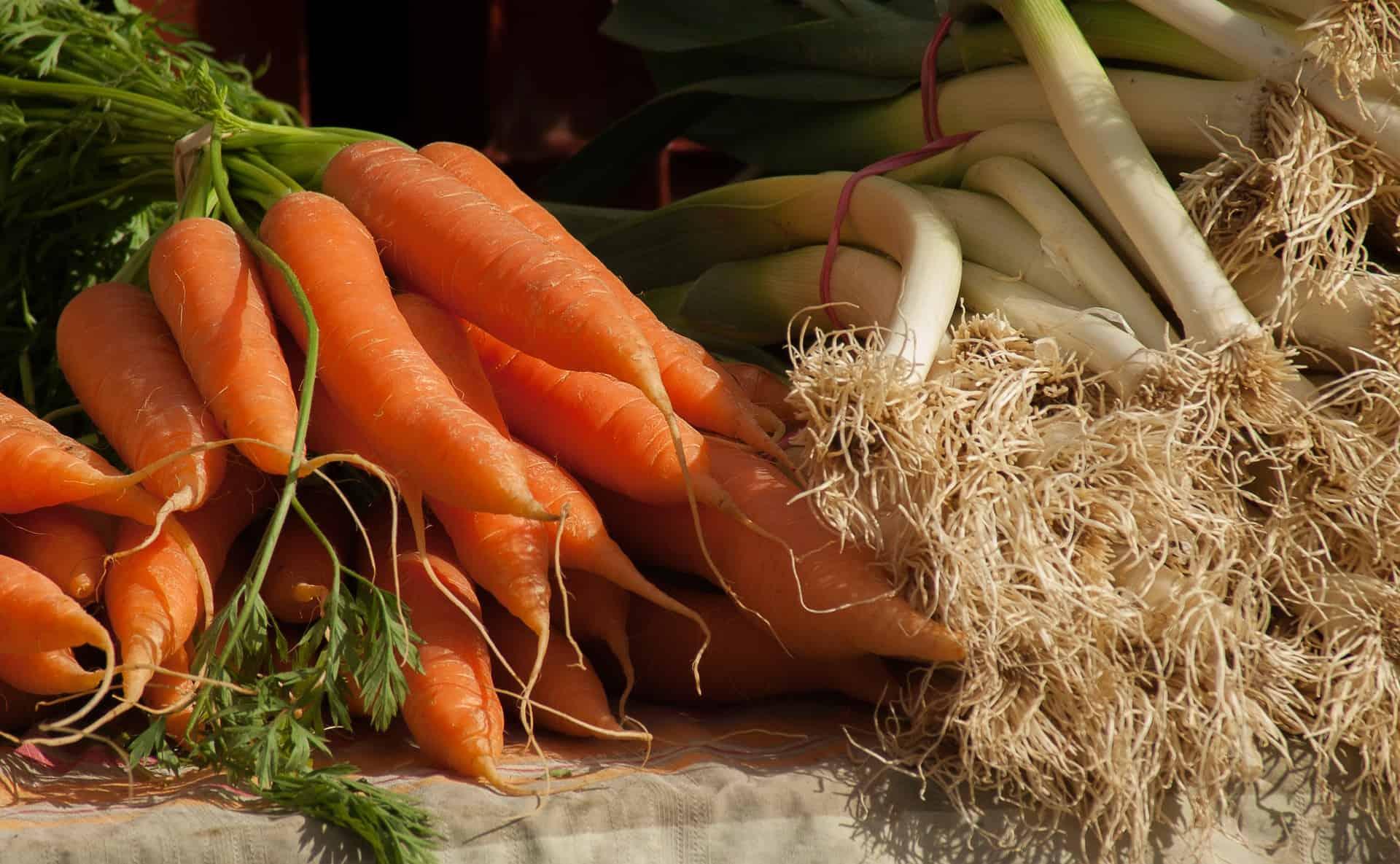 10 buoni motivi per avere un orto casalingo