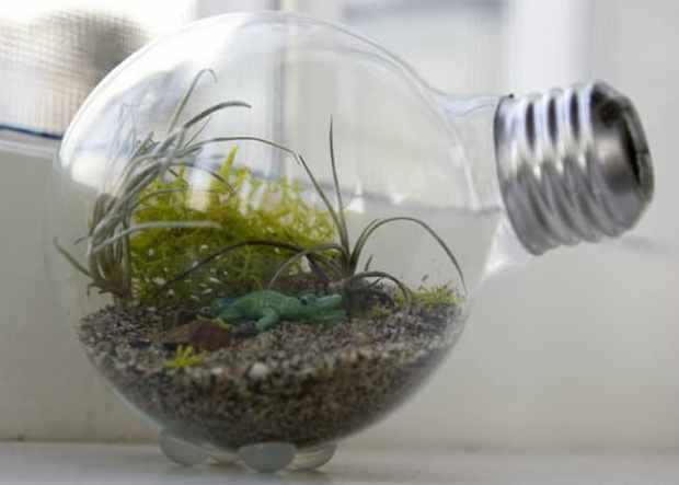 con queste vecchie lampadine potete sbizzarrirvi nel creare fantasie colorate intorno a piccole, piccolissime piantine adatte a crescere in una sorta di mini-serra