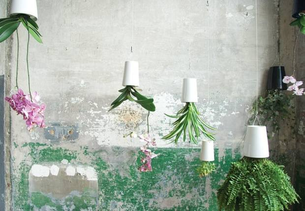 contenitori trasformati in vasi per piante pendenti