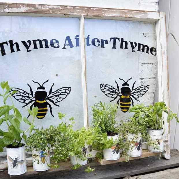 Vernice bianca per dipingere i barattoli, fiori e piante in quantità e, tocco finale, un adesivo o uno stencil per decorare il barattolo con api e insetti