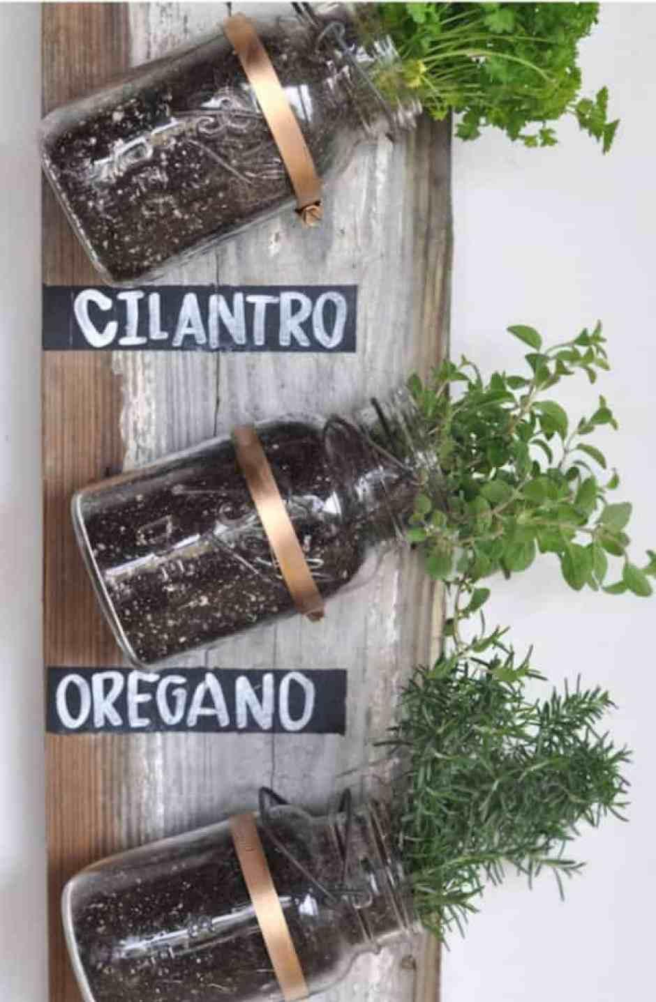 Originale orto aromatico da parete