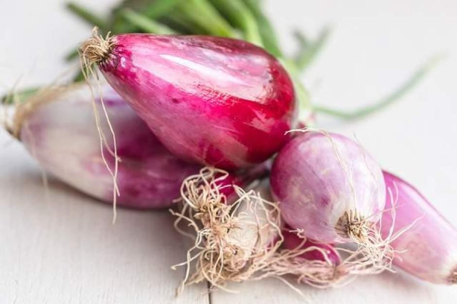 Cipolla rossa di Tropea, una delle varietà più prelibate per preparare insalate e composte
