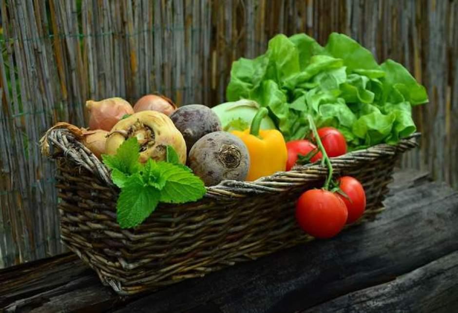 Un cesto con il raccolto dell'orto pieno di pomodori, peperoni, insalata, cipolle ed erbe aromatiche.