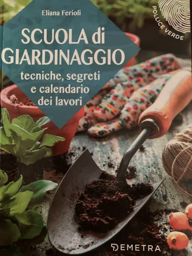 Scuola di giardinaggio: tecniche, segreti e calendario dei lavori