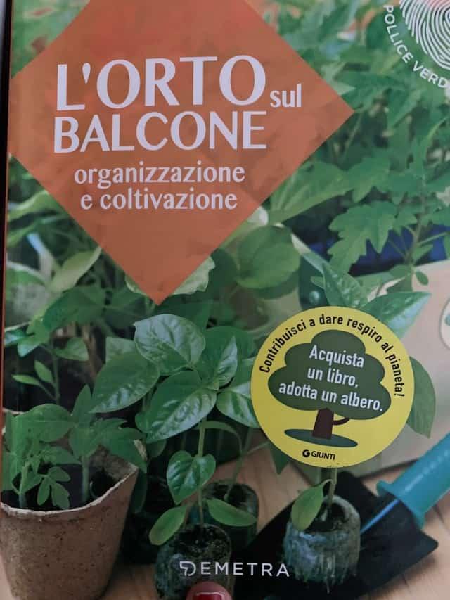L'orto sul balcone: come organizzarlo per coltivare al meglio
