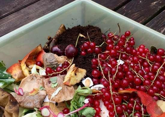 Il fertilizzante rimette in circolo nel terreno i nutrienti di cui c'è bisogno