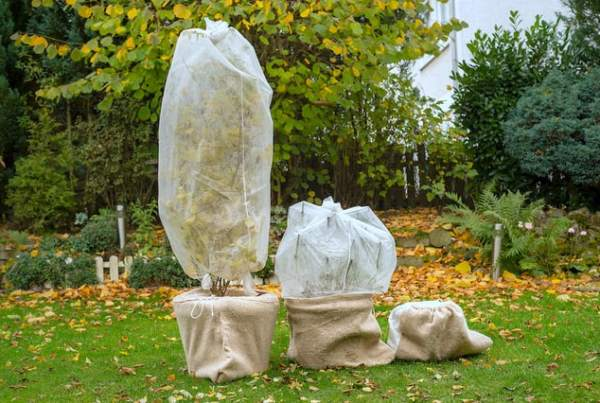 telo antigelo protettivo piante inverno