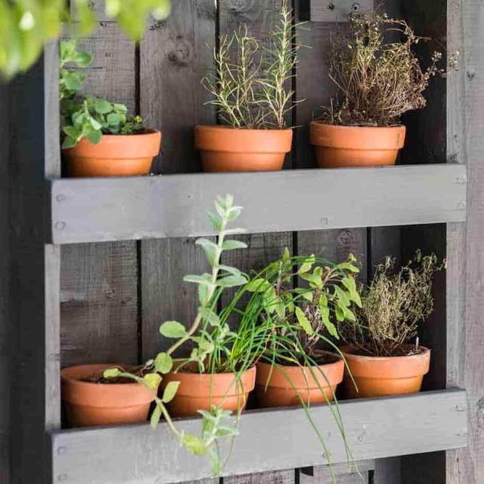 orto verticale in giardino