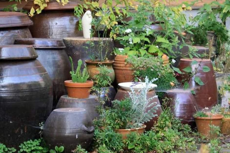 tipologie di vasi per il giardino