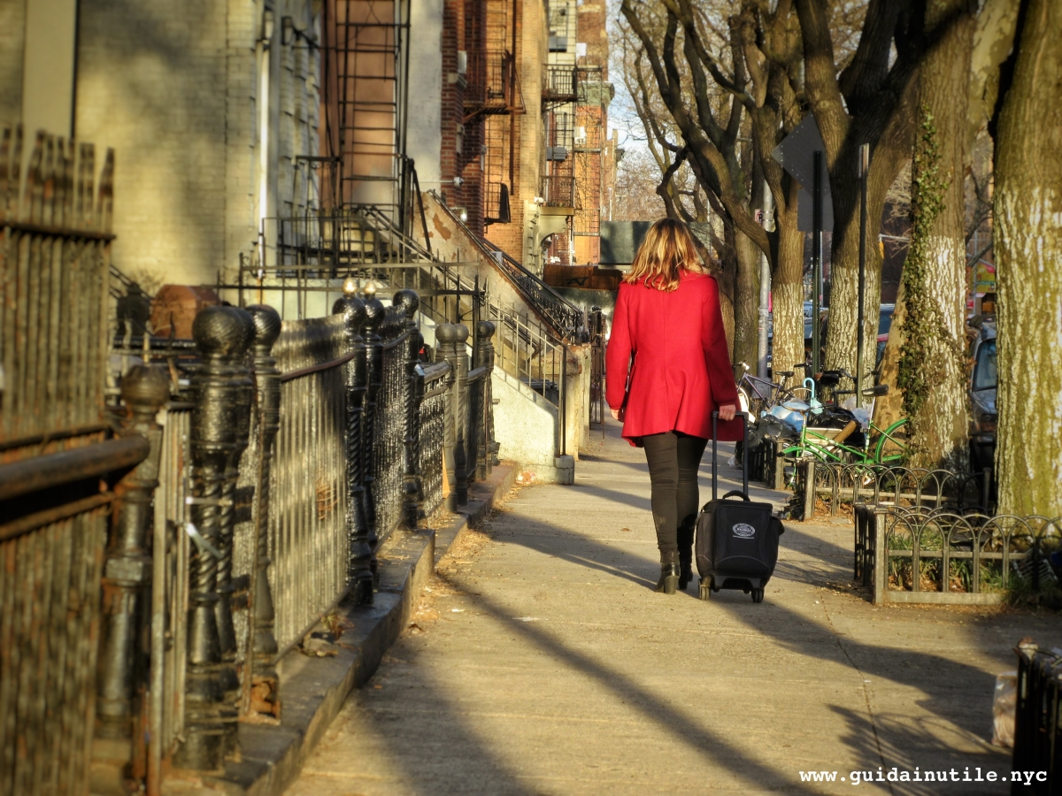 Cosa vedere a Brooklyn 1  BedStuy e South Williamsburg