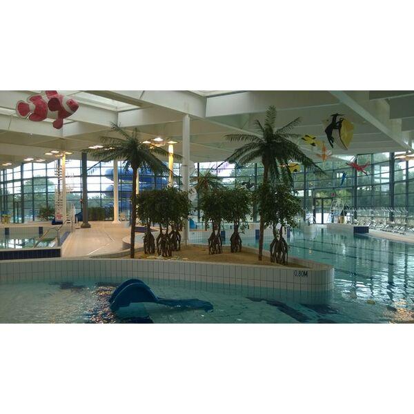 Centre aquatique AlreO  Piscine  Auray  Horaires