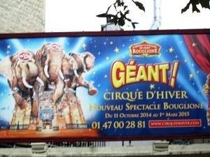 cirque hiver8