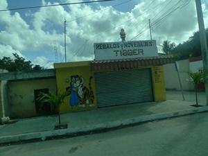 VUEMERIDA3
