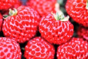 fraise framboise