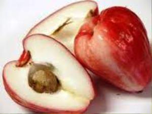 pomme d'eau